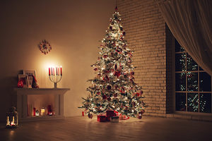Pests can get into your home by clinging onto your christmas trees