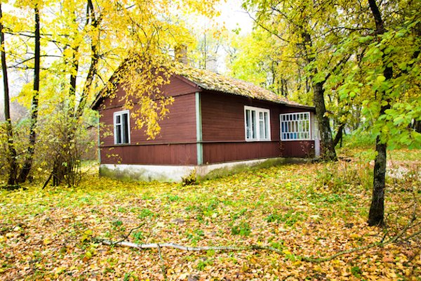 do outdoor maintenance to prevent pests at your cabin