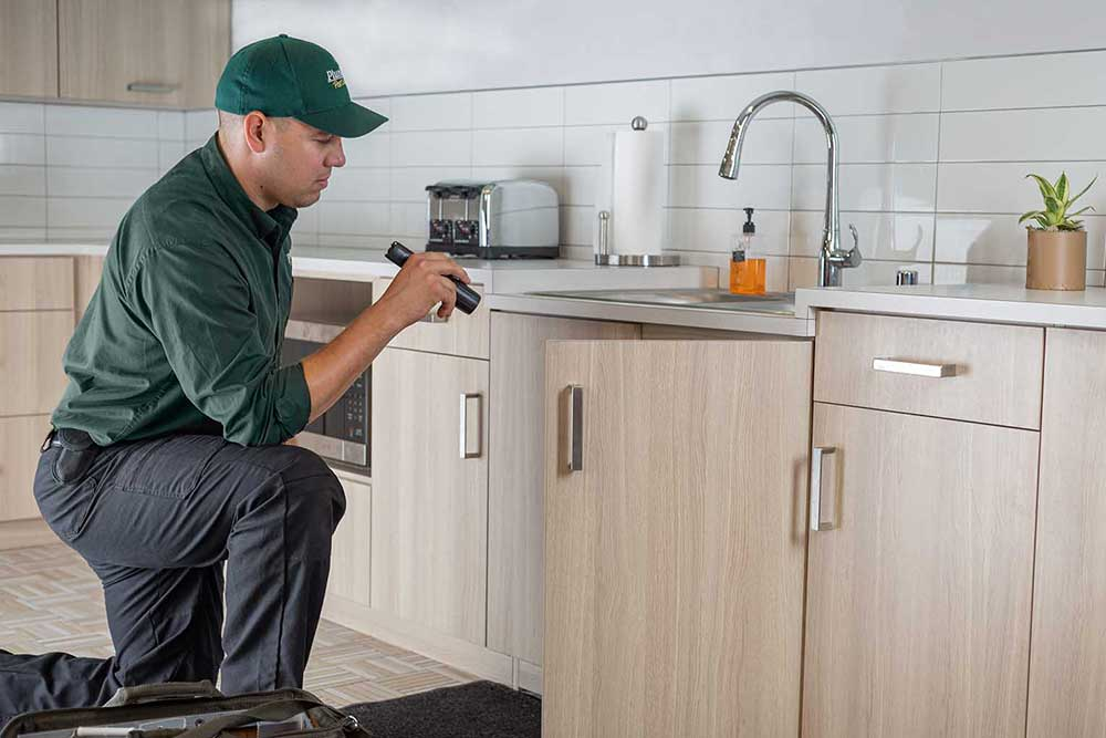 Pest Control Technician Inspecting Sink Cabinet