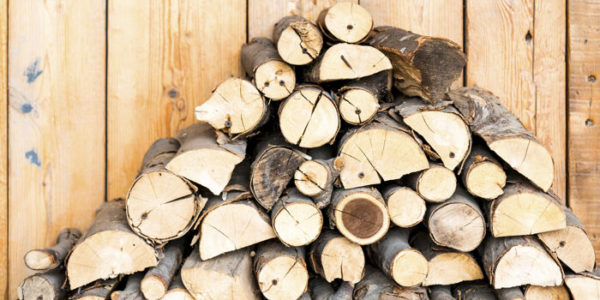 keep pests out of firewood